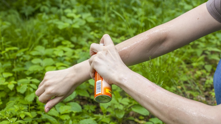 Новосибирцы раскупают репелленты против комаров и мошек