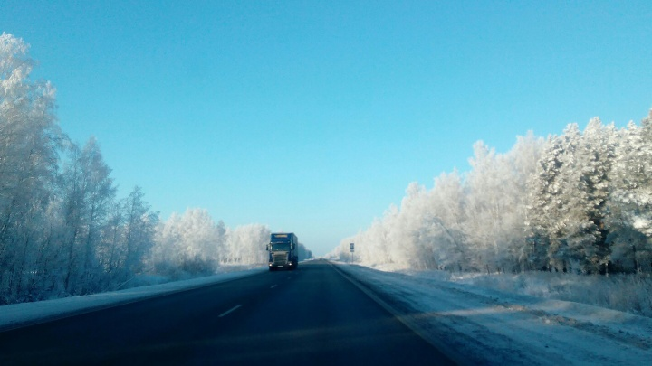 На трассе в Омской области водитель «Рено» наехал на лежавшего пешехода