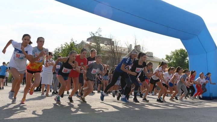 «Волгоградскую милю» пробежали более 500 человек