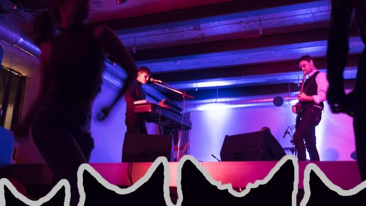 В Перми пройдёт благотворительный рок-концерт в поддержку бездомных животных