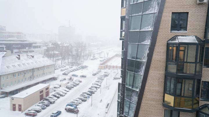Метель в Архангельске сменит оттепель: прогноз погоды до конца недели