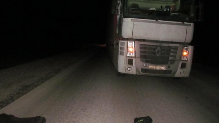 Фура сбила жителя Башкирии, вышедшего на трассу ночью