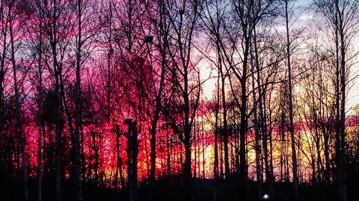 Фото дня. Многообразие цветовой палитры нижегородского неба