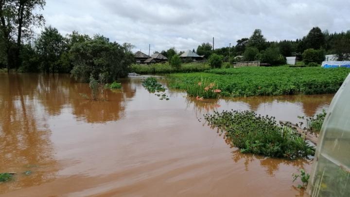 Ломает мосты, размывает дороги, заливает огороды. Из-за сильных дождей в Прикамье начался паводок