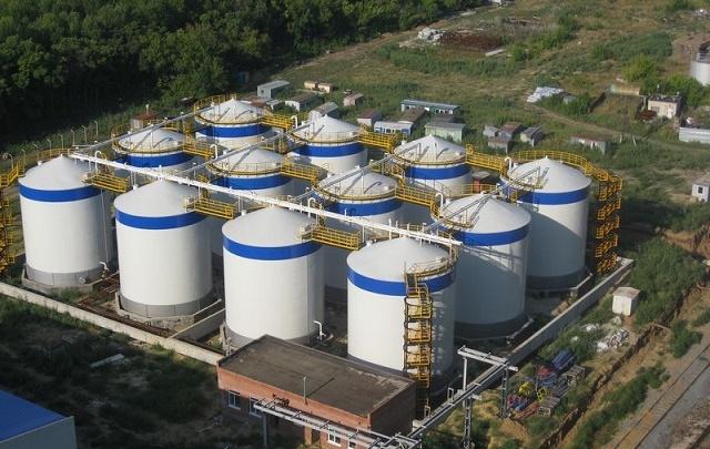 Молочные реки: в Самарской области хотят построить хай-тек ферму