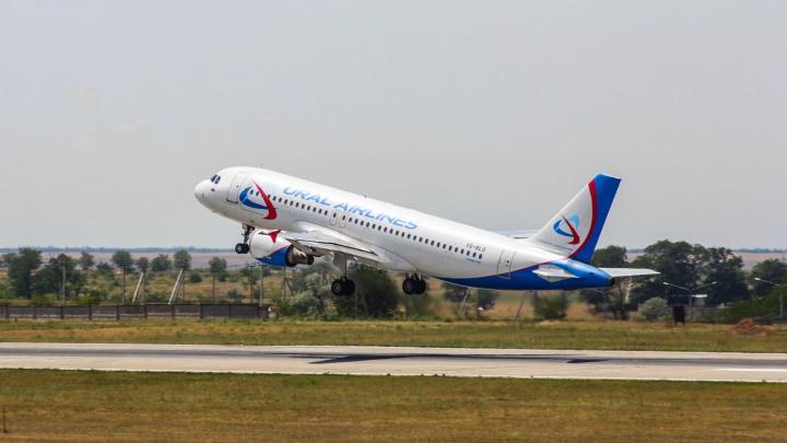 «Уральские авиалинии» откроют прямые перелеты из Самары в Ташкент и Баку