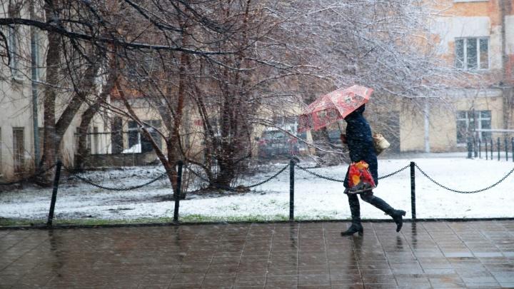 Тепла не ждите: в начале лета в Свердловскую область придёт снег
