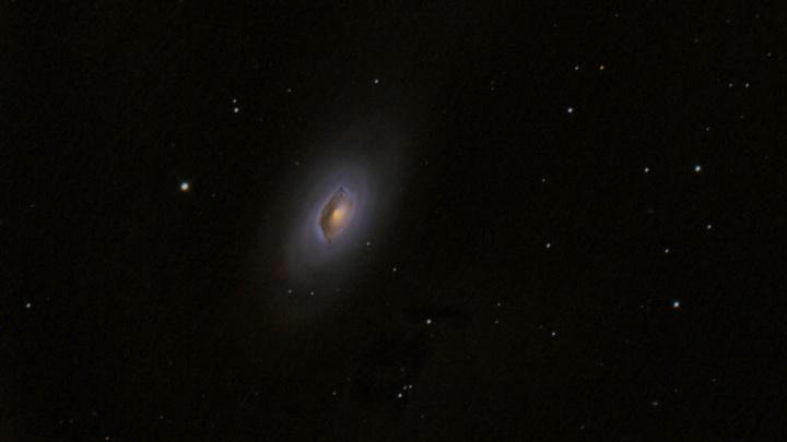 Новосибирцы рассмотрели в небе две слипшиеся галактики в Волосах Вероники