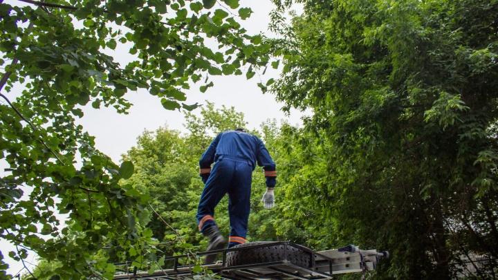 Спасатели сняли с крыши двух любознательных мальчиков