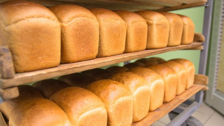 В Самарской области повара выпекали хлеб с помощью шпателя