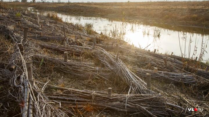 В Волгоградской области из-за вернувшегося тепла вырос риск пожаров