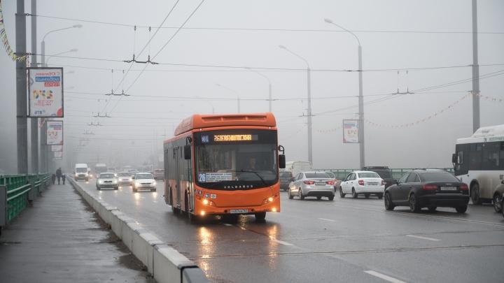 Ростовский сити-менеджер признал, что не знает, как решить проблему с транспортом в городе