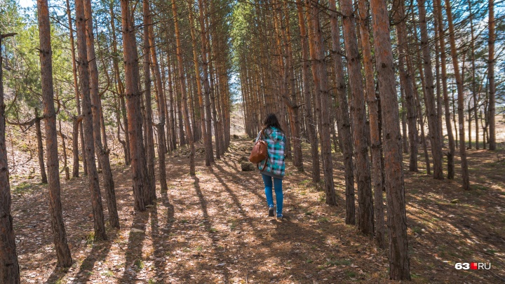 Полицейские нашли заблудившегося в «Самарской Луке» грибника