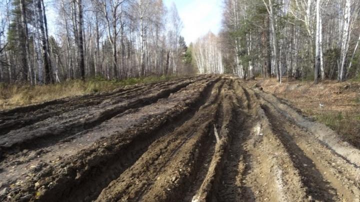 Мастеров «невидимого дорожного ремонта» Сароянов заподозрили в легализации криминальных доходов