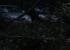 «Дерево весом около тонны упало на две машины»: в Екатеринбурге штормовой ветер повалил деревья