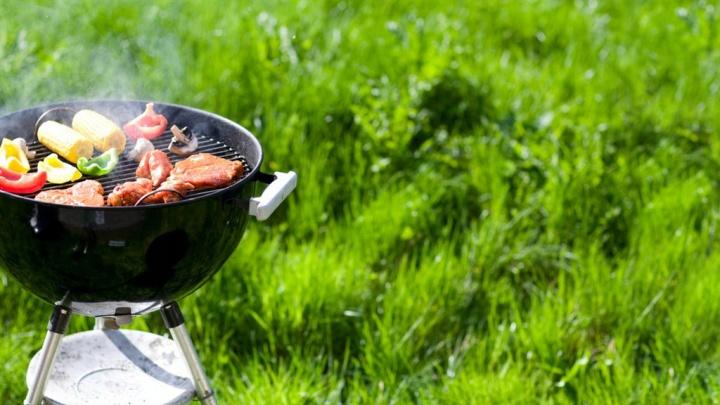 Тюменцам устроят бесплатный пикник в «Кулига-Парке»