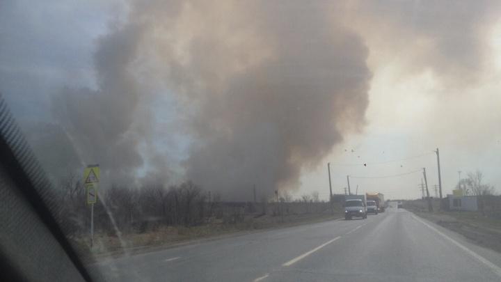 «Огонь движется!»: в районе Чапаевска загорелась трава на площади 800 кв. метров