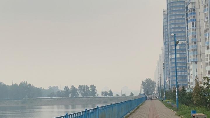 «Мы задыхаемся»: петицию за чистое небо в Красноярске разместили на сайте инициатив Правительства РФ