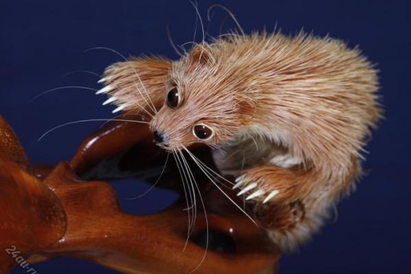 Шерсть у животных полностью сделана из кедровой стружки