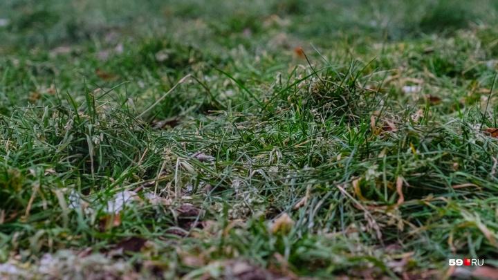 Понижение температуры и снег: рассказываем о погоде в Прикамье на выходные