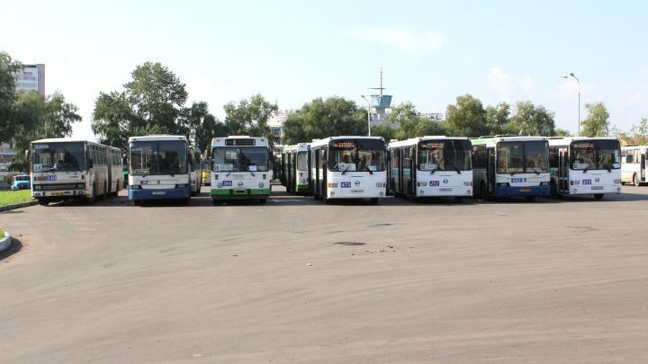 Омичей после праздничного фейерверка развезут по домам на 57 автобусах