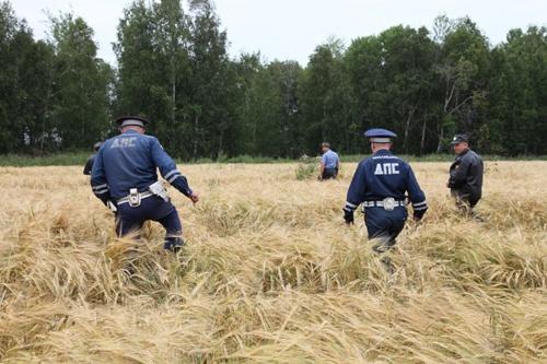 В Свердловской области полиция, МЧС и военные ищут подростка, страдающего эпилепсией