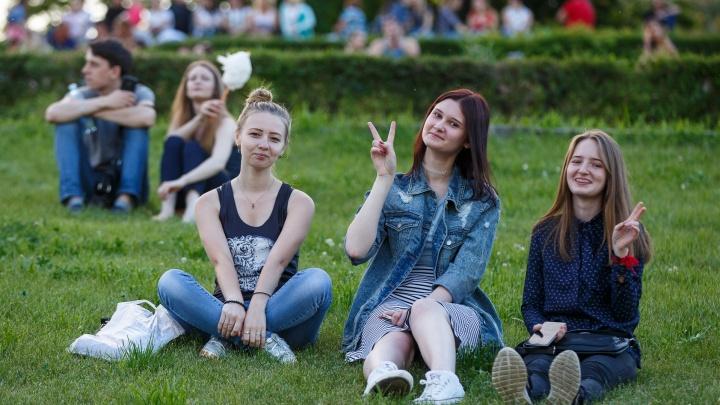 О датском доге и итальянских каникулах: волгоградцев зовут в кинотеатр под звездами