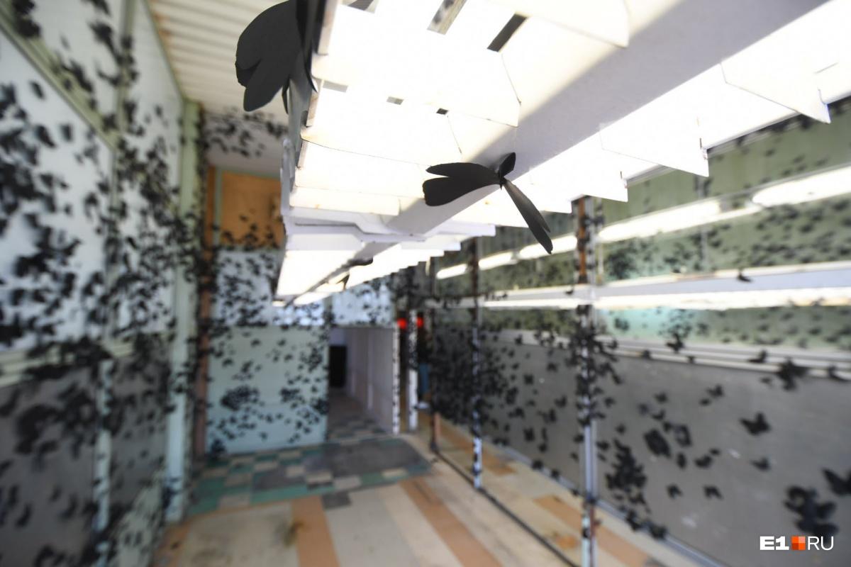 Комната с бабочкой стает самым популярным местом для селфи