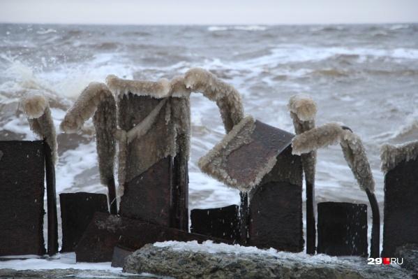 После ЧП в Неноксе местный эколог советовал не ловить рыбу в Белом море