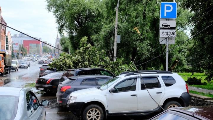 Град, гроза и шквалистый ветер: МЧС просит пермяков быть осторожными во время непогоды