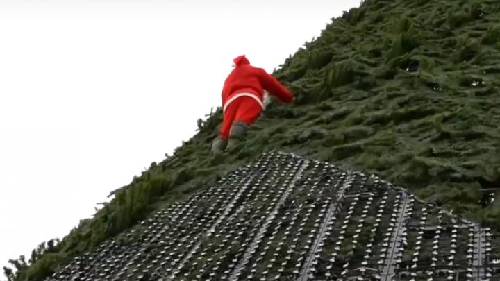 Монтажник в костюме Санта-Клауса покорил елку на острове Татышев