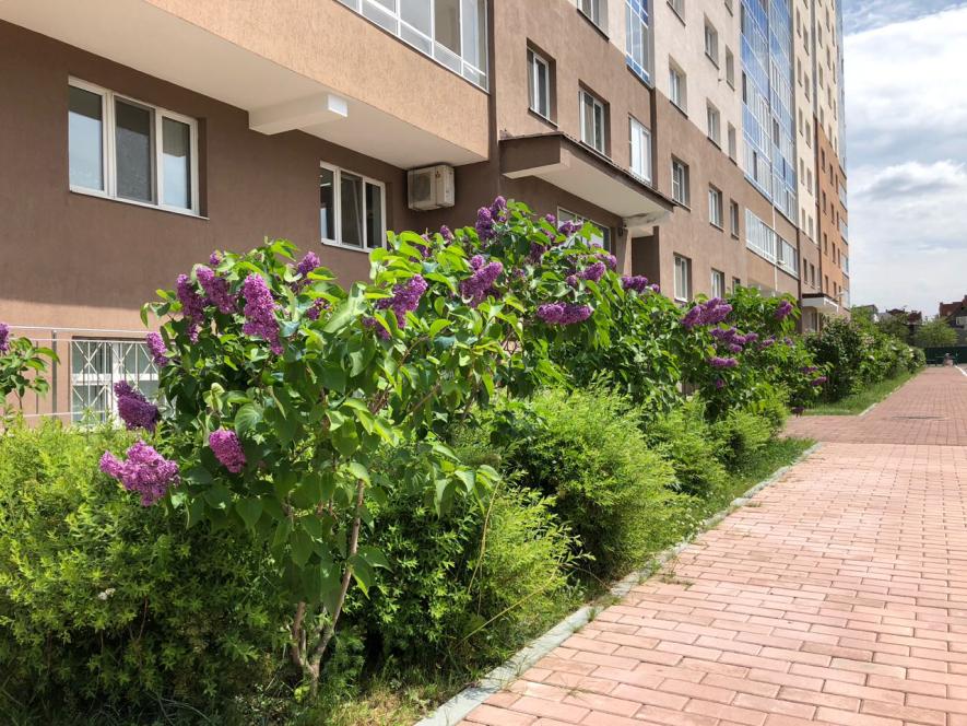 «Сделано для людей»: жилой комплекс рядом с городским парком покорил уральцев европейским комфортом