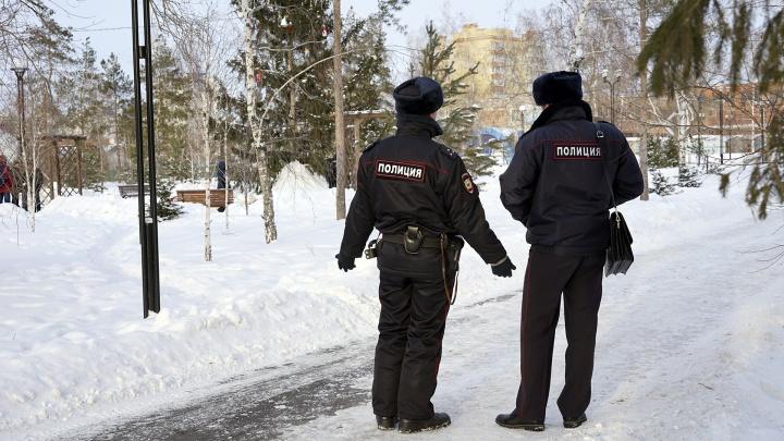 Школьница, которую четыре дня искали в Новосибирске, нашлась под Омском