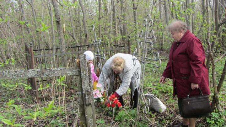 Детство на костях: в Коноше собираются построить новую школу на территории бывшего кладбища