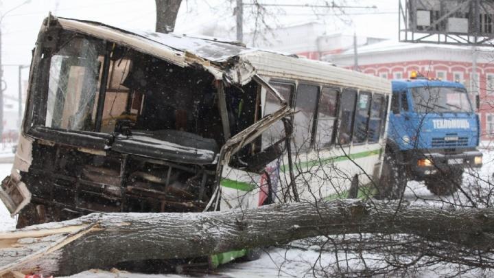 «Могут наказать невиновного»: в Ярославле ищут водителя неуправляемого автобуса, угодившего в ДТП