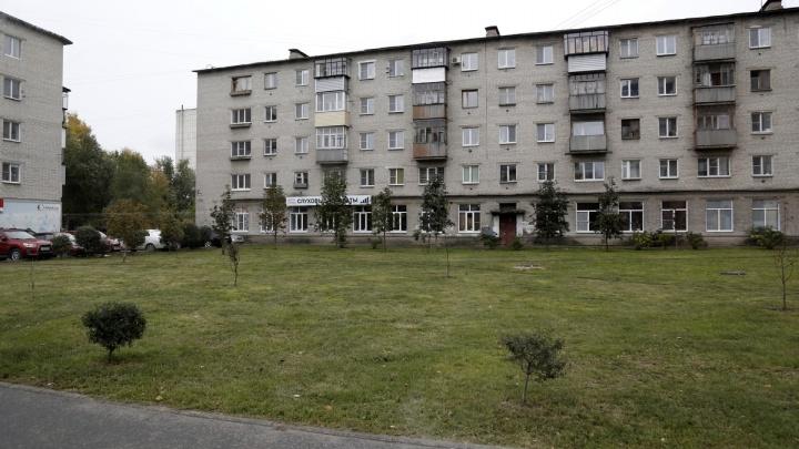 Шумков пообещал «популярно разъяснить» коммунальщикам, как убирать дворы Кургана