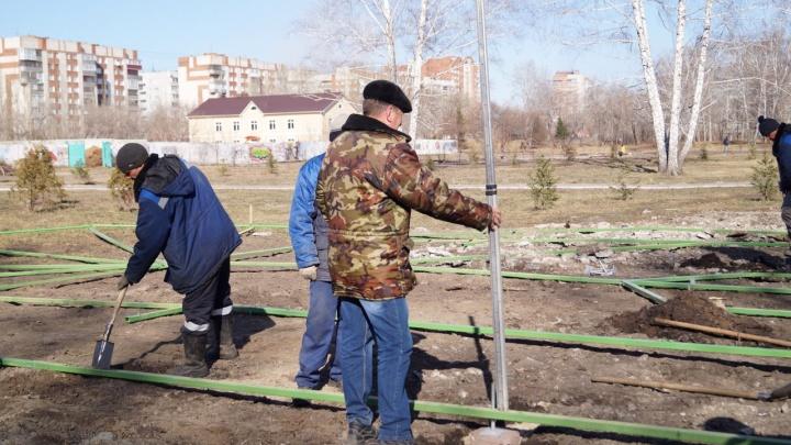 Ради аттракциона «Гусеница» с аллеи ветеранов демонтировали восемь уфсиновских елей