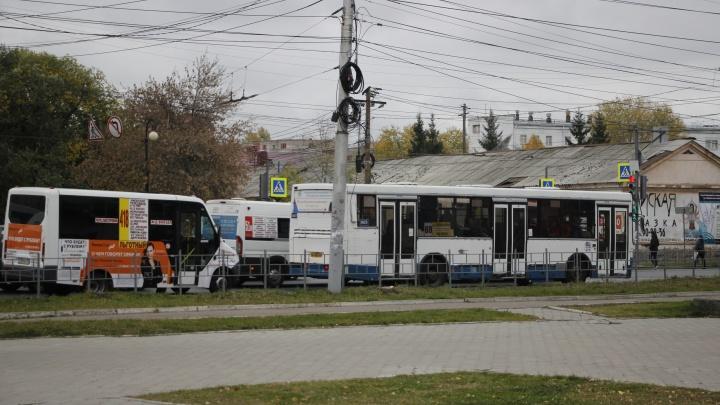 Водителя, выгнавшего беременную омичку из маршрутной «Газели», уволили в тот же день