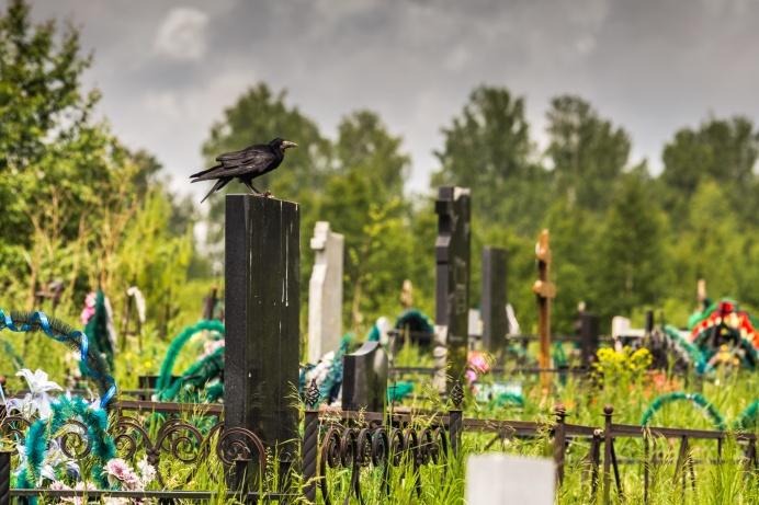 Новосибирские кладбища становились местами действия мистических романов и детективных повестей