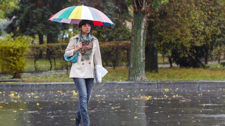 В Волгоградской области ожидаются сильные грозовые дожди и до+29º