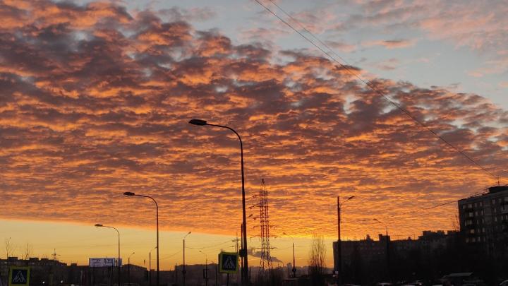Столица рассветов: смотрим на 10 снимков невероятно красивого неба в Нижнем Новгороде