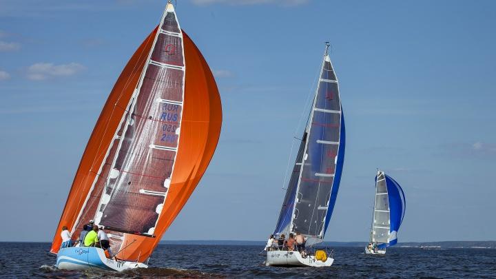 Разноцветные паруса на Волге: Алексеевская регата вновь собрала яхтсменов на Горьковском море