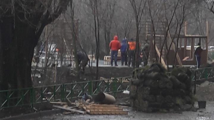 На Северном переняли опыт Первомайского района Ростова по посадке травы зимой