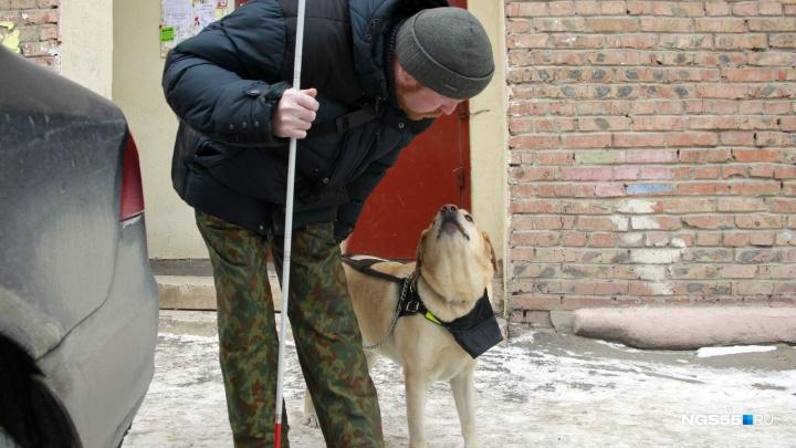 «Я его три года ждал»: история дружбы слепого мужчины и пса-поводыря, которому нужна помощь