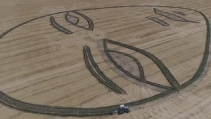 Его делали трактором: пермский художник Sad Face изобразил грустное лицо на поле под Краснодаром