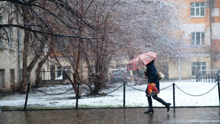 Потерпите пару дней: синоптики рассказали, когда в Екатеринбурге потеплеет