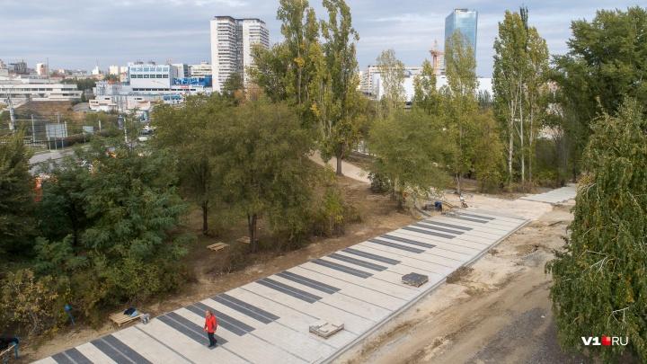 «Это же не заросли»: в сквере Волгограда поставят скульптуру Пахмутовой и уберут «лишние» деревья