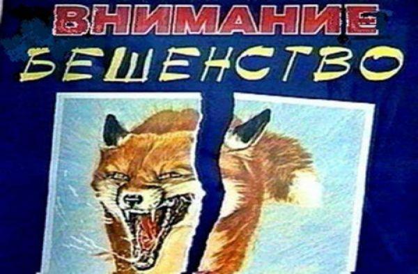 Карантин побешенству введен вЛысковском районе до5сентября