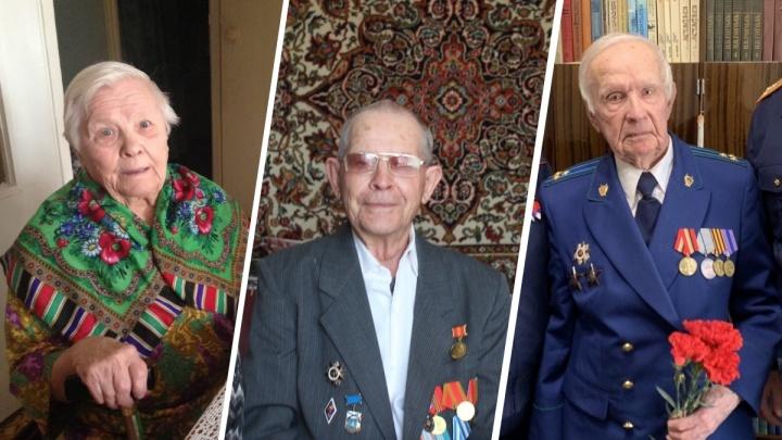 Три истории ветеранов: собираем вместе с читателями NGS24 память о фронтовиках