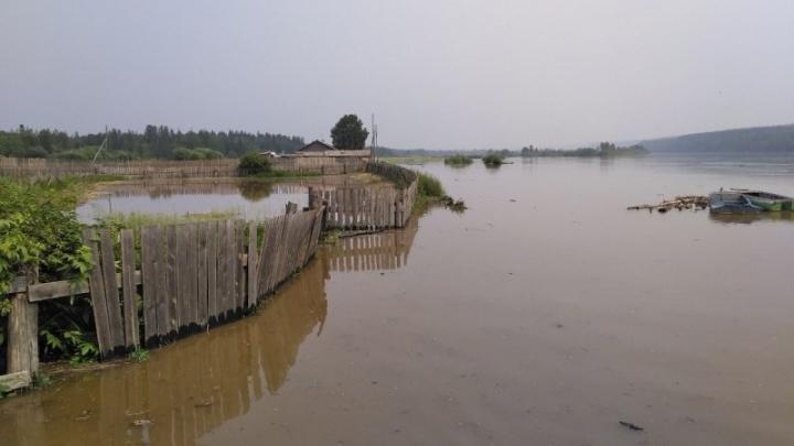 Бирюса вышла из берегов: увеличилось число эвакуированных людей в Абанском районе